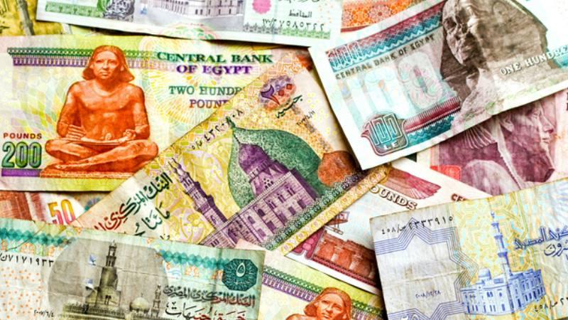 мы советуем пользоваться долларом, так как для египтян они более привычны